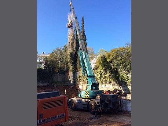 Κοπή κλάδεμα υψηλών δέντρων με χρήση τηλεσκοπικού γερανού με καλάθι